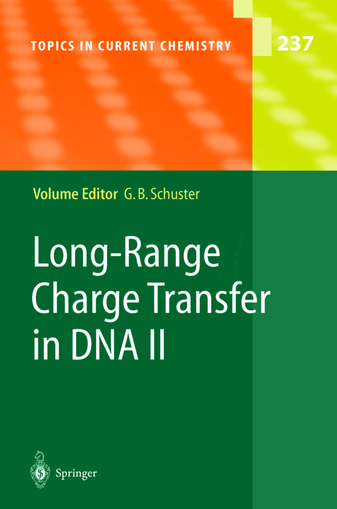 Long-Range Charge Transfer in DNA II als Buch