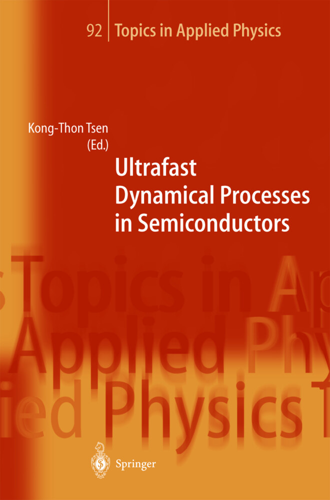 Ultrafast Dynamical Processes in Semiconductors als Buch