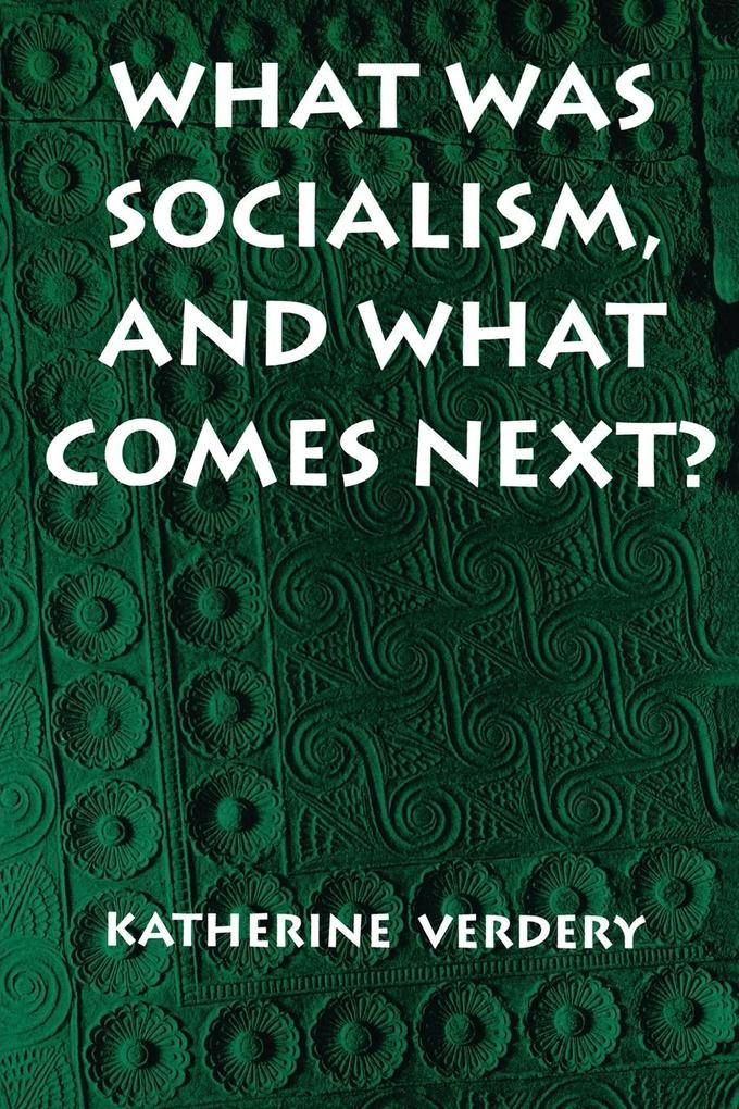 What Was Socialism, and What Comes Next? als Taschenbuch