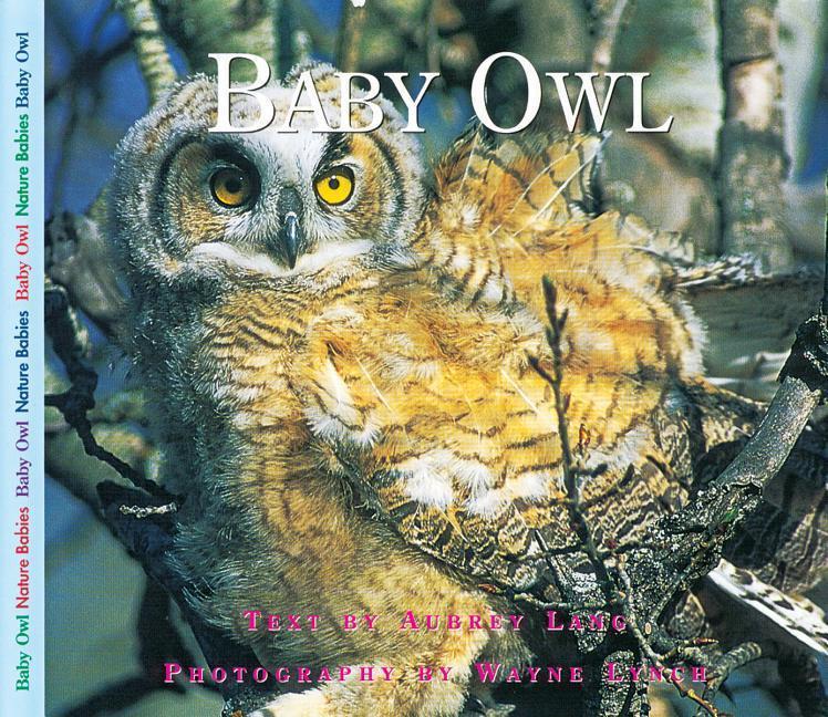 Baby Owl als Taschenbuch