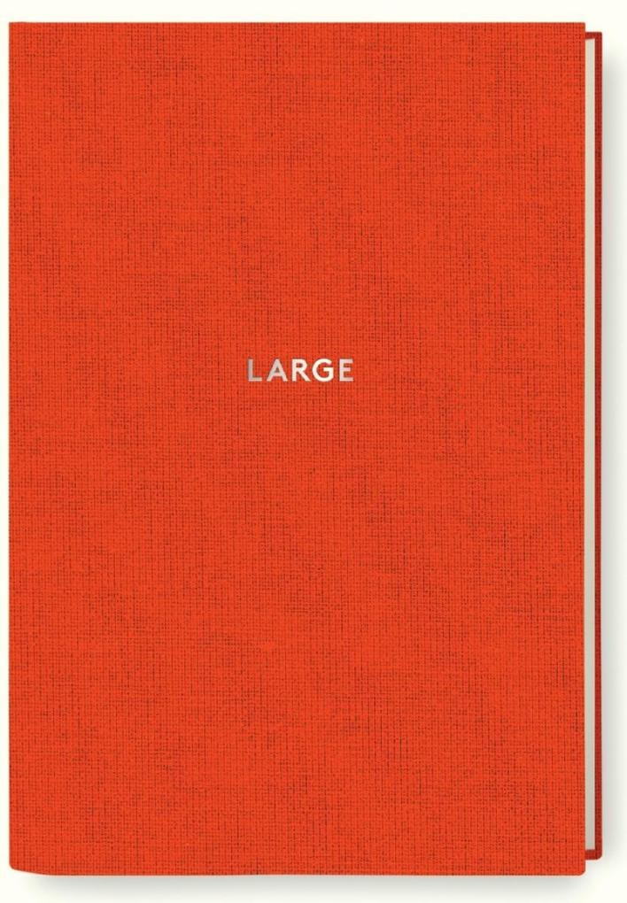 Diogenes Notes - large als Buch