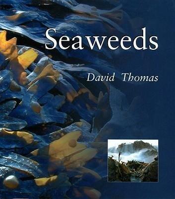 Seaweeds: Seaweeds als Taschenbuch