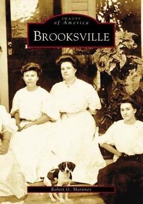 Brooksville als Taschenbuch