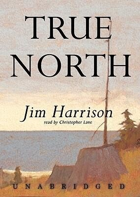 True North als Hörbuch