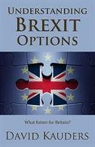 Understanding Brexit Options als Taschenbuch