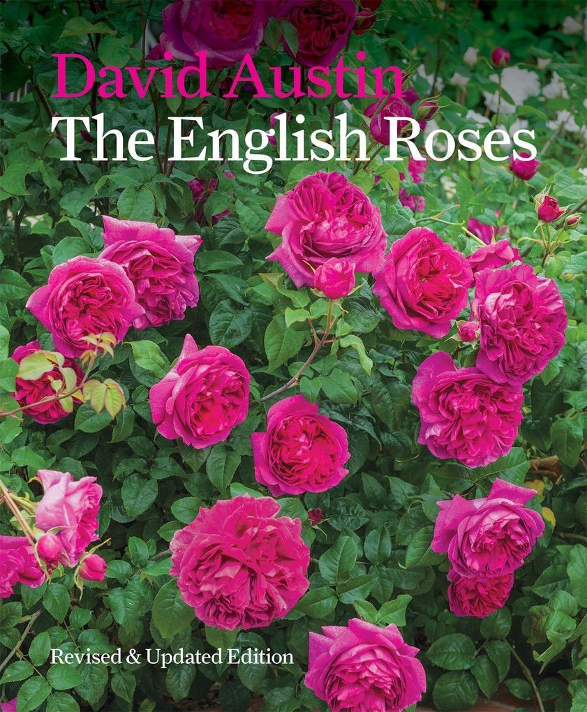 The English Roses als Buch von David Austin