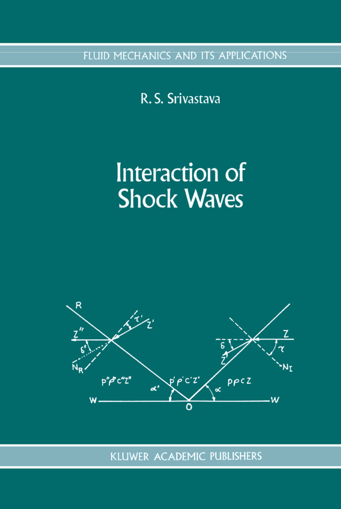 Interaction of Shock Waves als Buch