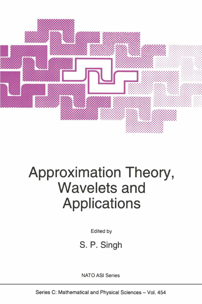 Approximation Theory, Wavelets and Applications als Buch