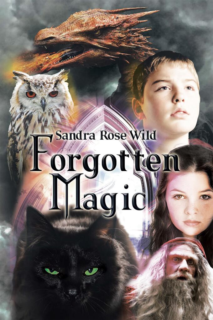 Forgotten Magic als eBook Download von Sandra R...