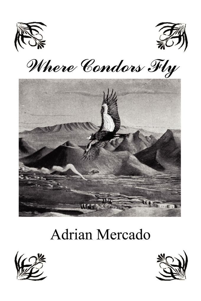 Where Condors Fly als Taschenbuch