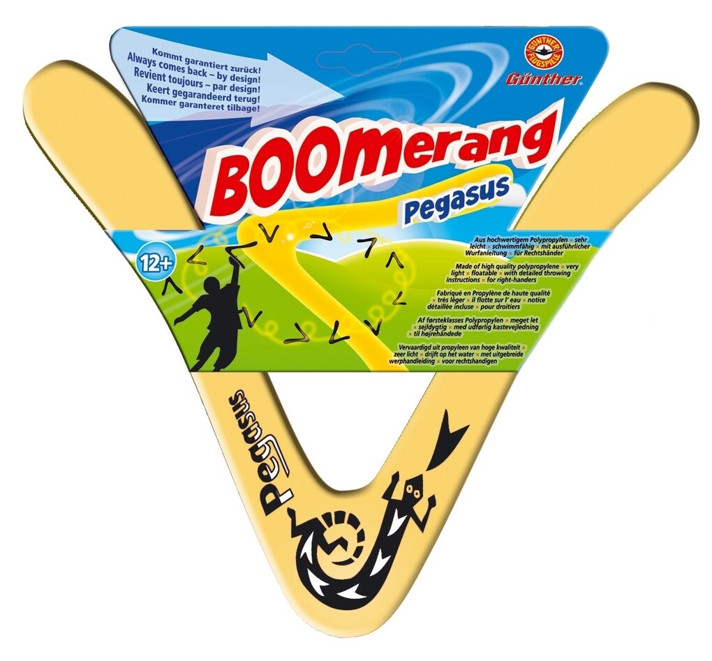 Günther Flugmodelle - Pegasus Boomerang