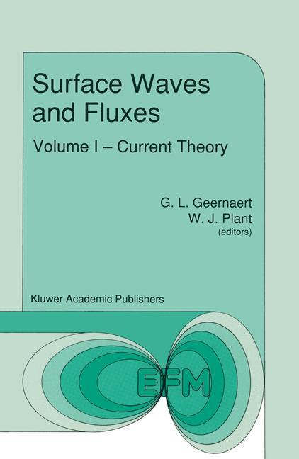 Surface Waves and Fluxes als Buch