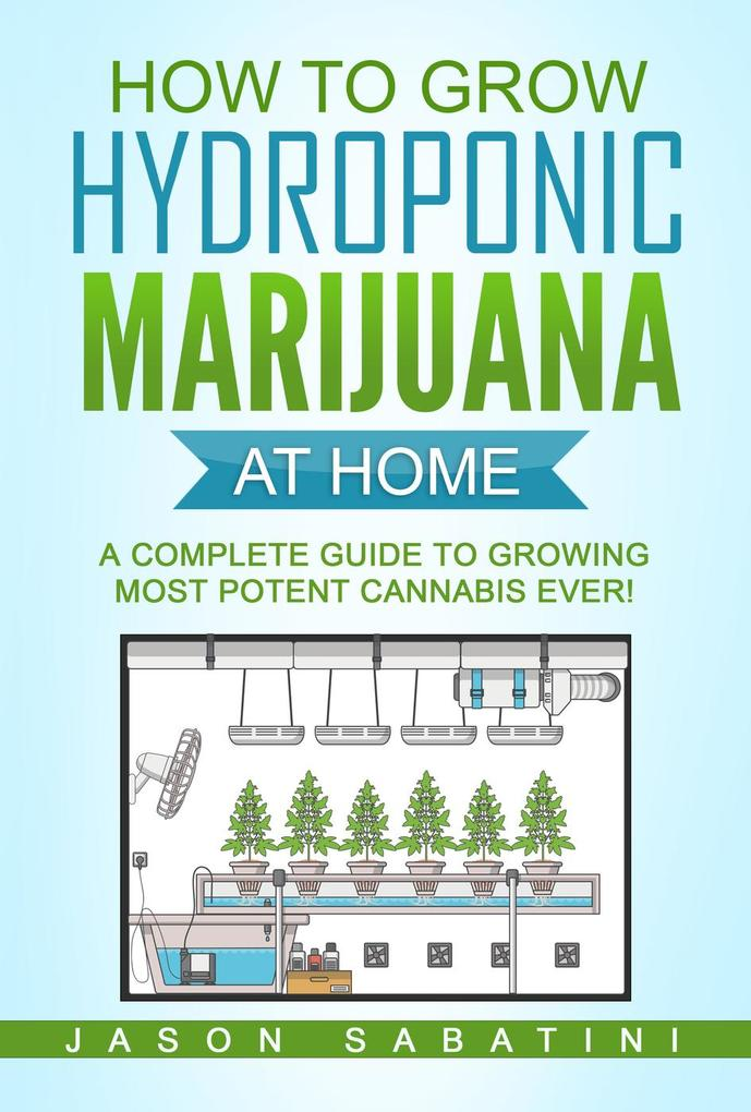 How to Grow Hydroponic Marijuana at Home - A co...