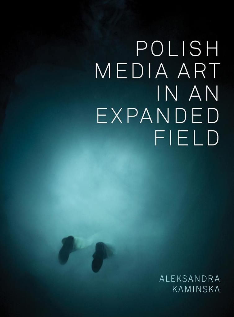 Polish Media Art in an Expanded Field als eBook...
