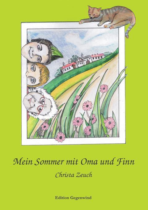 Mein Sommer mit Oma und Finn als Buch