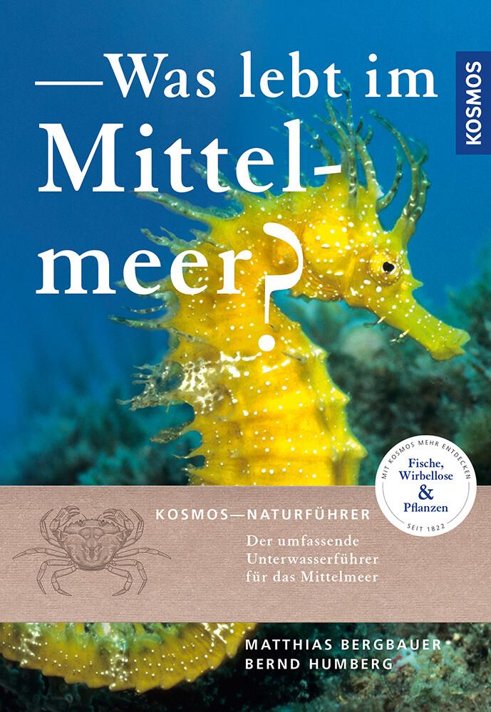 Was lebt im Mittelmeer? als Buch