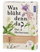 Was blüht denn da? - Das Herbarium