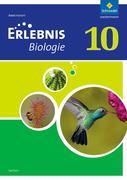 Erlebnis Biologie 10. Arbeitsheft. Sachsen