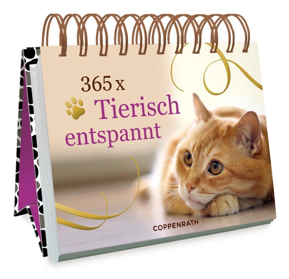 365 x Tierisch entspannt als Buch