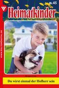 Heimatkinder 45 - Heimatroman