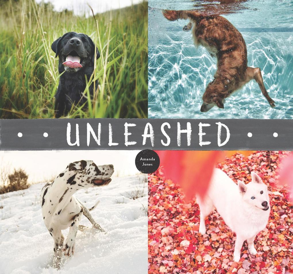 Unleashed als eBook Download von Amanda Jones