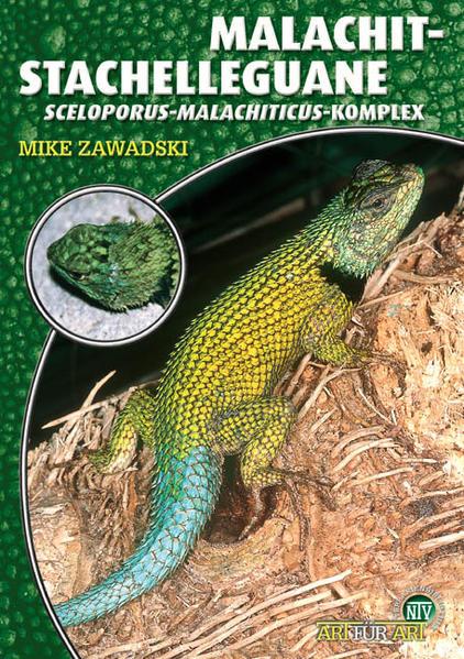 Malachit-Stachelleguane als Buch
