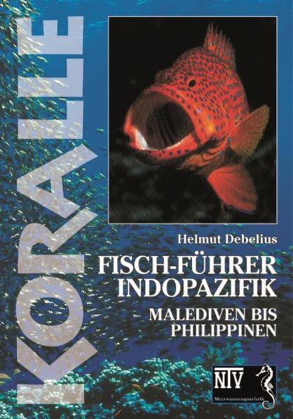 Koralle - Fisch-Führer Indopazifik als Buch