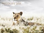 Wildlife 64 x 48 Poster Calendar 2018