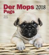 Pugs 30 x 34 Wall Calendar 2018