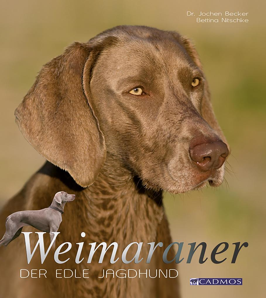 Weimaraner als eBook Download von Jochen Becker...