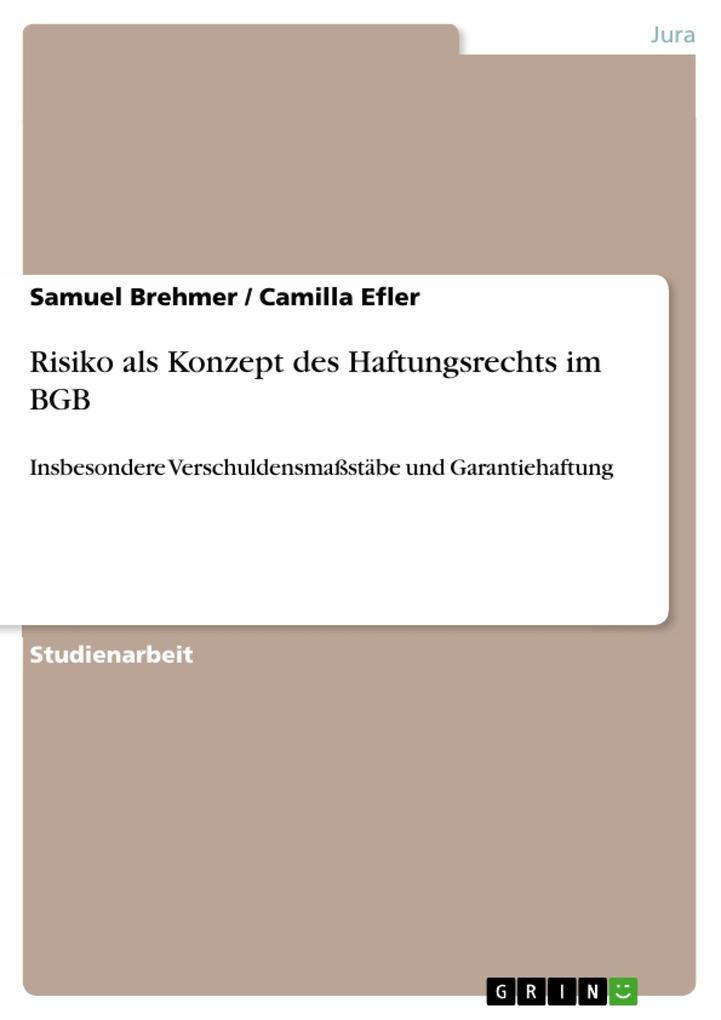 Risiko als Konzept des Haftungsrechts im BGB als Buch (kartoniert)
