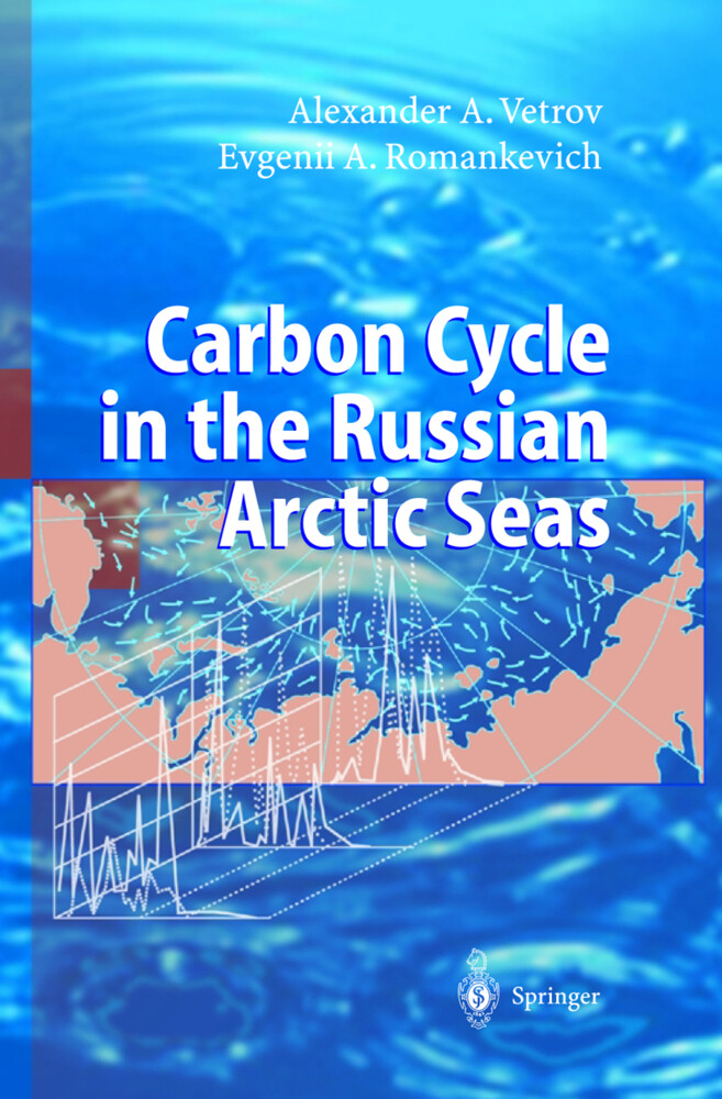 Carbon Cycle in the Russian Arctic Seas als Buch (gebunden)