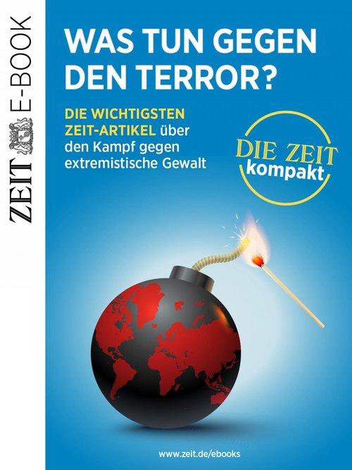 Was tun gegen den Terror? als eBook