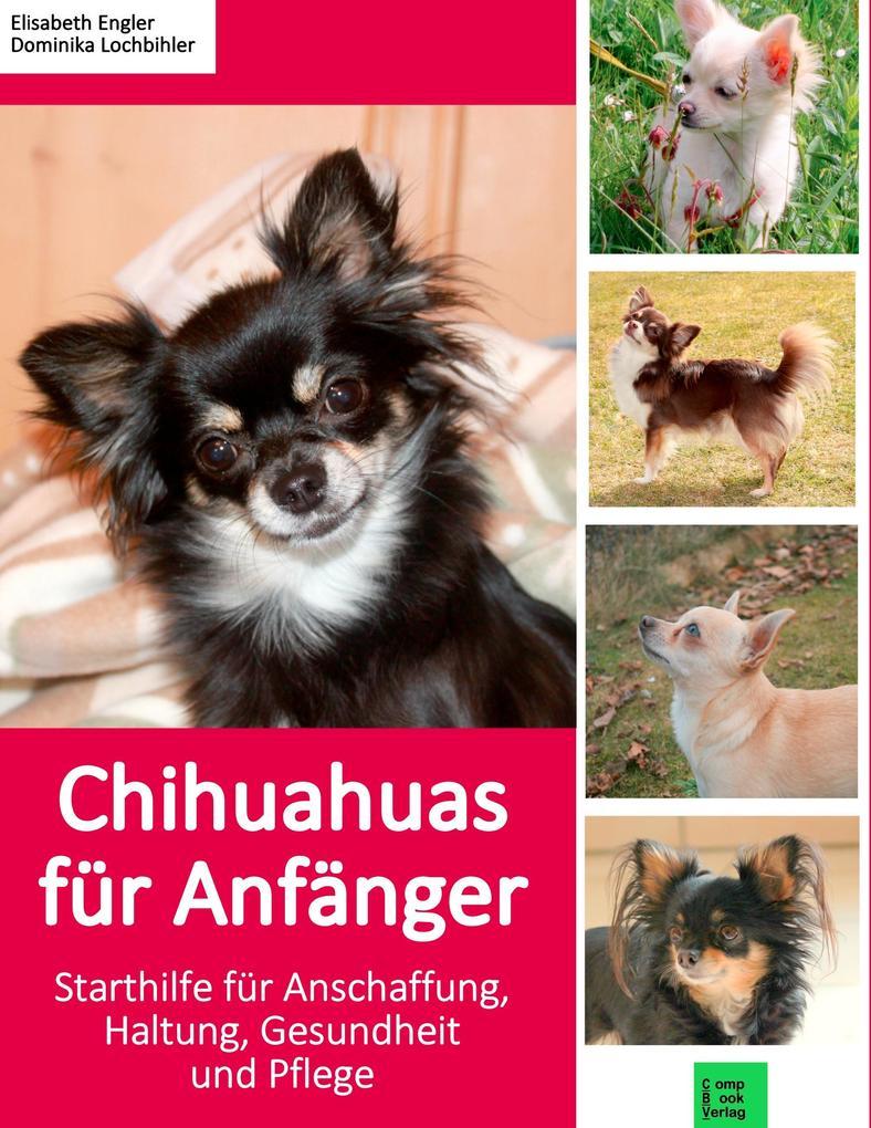 Chihuahuas für Anfänger als Buch von Elisabeth ...