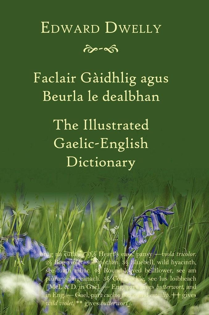 The Illustrated Gaelic-English Dictionary als Buch