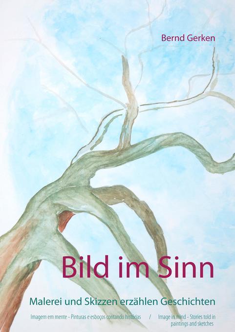 Bild im Sinn als Buch von Bernd Gerken