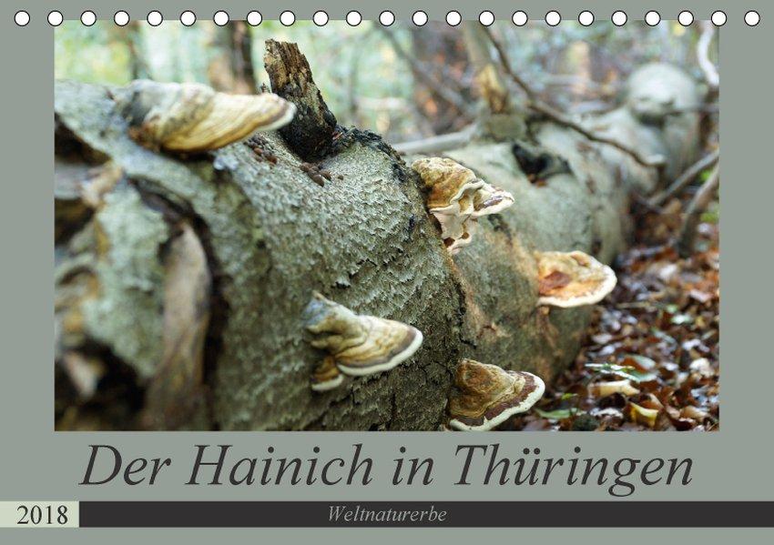 Der Hainich in Thüringen - Weltnaturerbe (Tisch...
