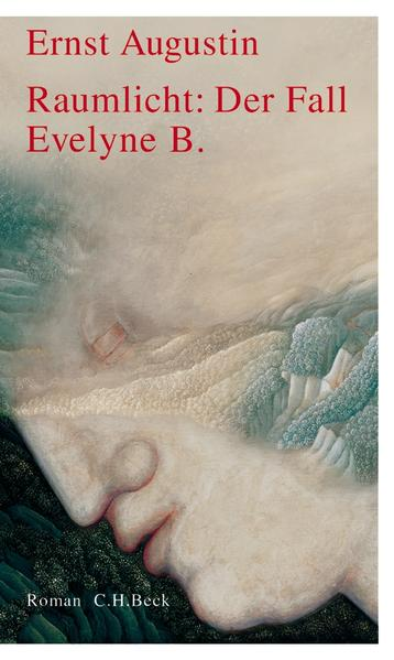 Raumlicht: Der Fall Evelyne B. als Buch (gebunden)