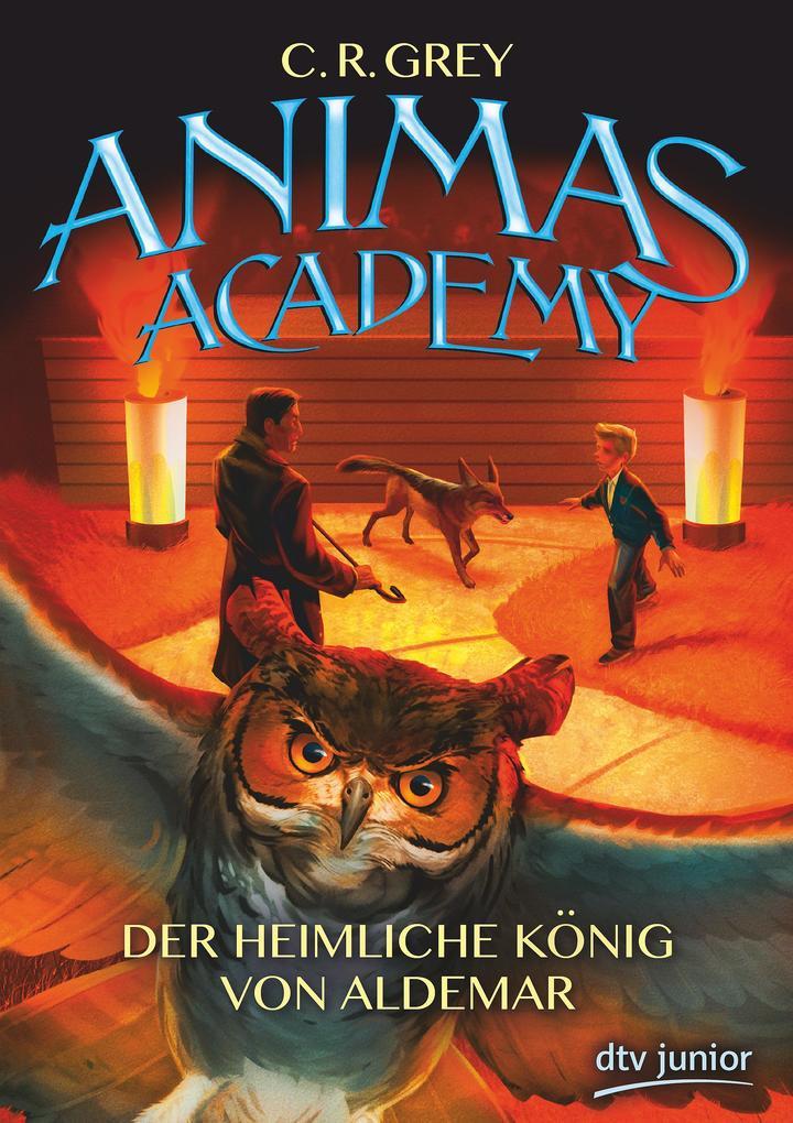 Animas Academy 02 - Der heimliche König von Aldemar als Buch