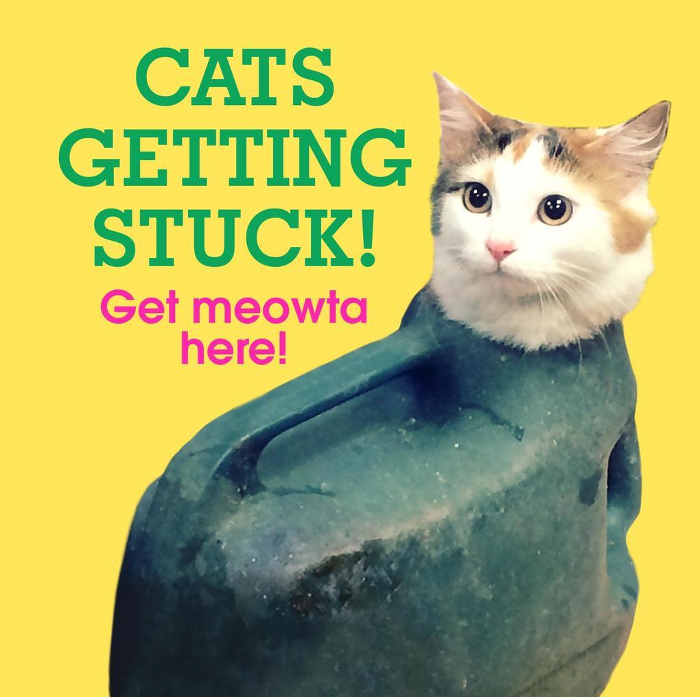 Cats Getting Stuck! als eBook Download von