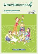 Umweltfreunde - Brandenburg 4. Schuljahr - Arbeitsheft