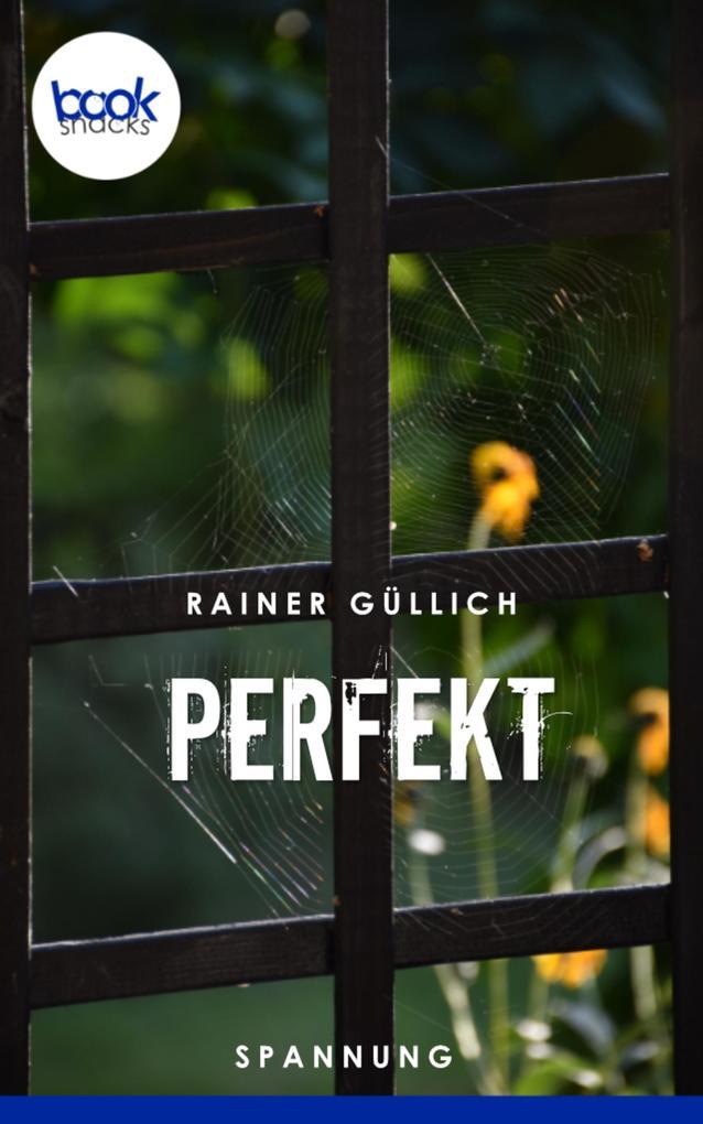 Perfekt (Kurzgeschichte, Humor) als eBook