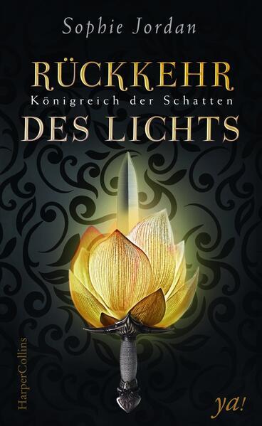 Königreich der Schatten 02 - Rückkehr des Lichts als Buch