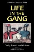 Life in the Gang: Family, Friends, and Violence