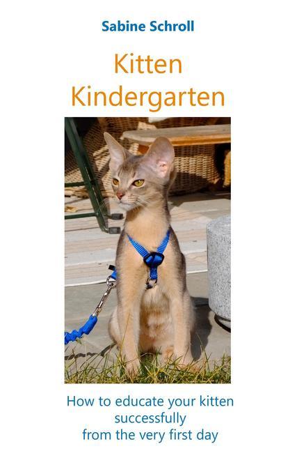 Kitten Kindergarten als Buch (kartoniert)