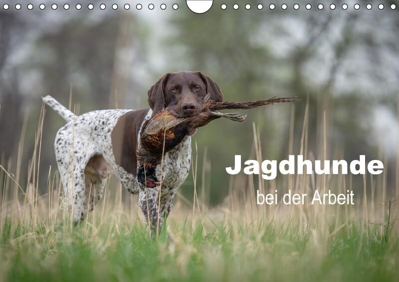 Jagdhunde bei der Arbeit (Wandkalender 2018 DIN...