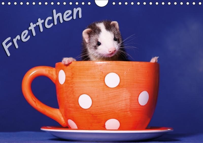 Frettchen - Ferrets (Wandkalender 2018 DIN A4 q...