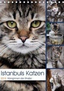 Istanbuls Katzen (Tischkalender 2018 DIN A5 hoch)