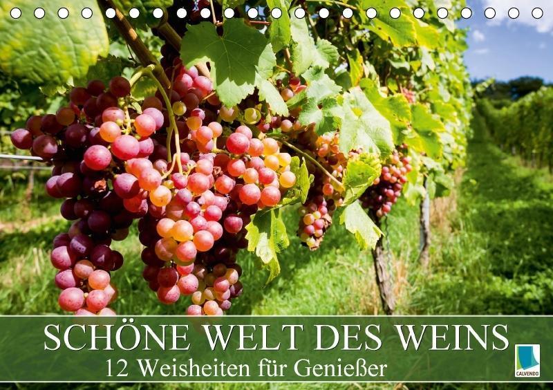 Schöne Welt des Weins: 12 Weisheiten für Genieß...