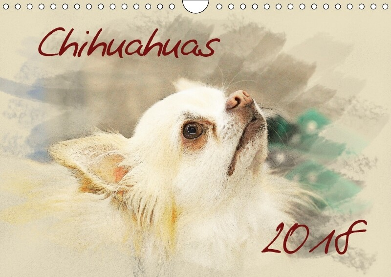 Chihuahuas 2018 (Wandkalender 2018 DIN A4 quer)...